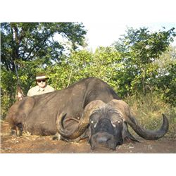14-day South Africa Cape Buffalo Hunt and Taxidermy Credit for One Hunter and One Observer