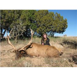 4-day New Mexico Rocky Mountain Elk for 1 Hunter and 1 Observer