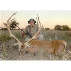 5-day Argentina Free-Ranging Red Deer, Blackbuck and Boar Hunt for Four Hunters