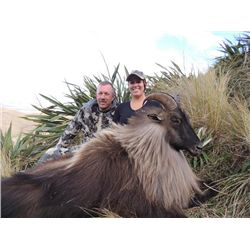 5-day New Zealand Free Ranging Tahr Hunt for One Hunter and One Observer