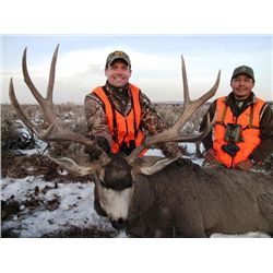 Navajo Nation Special Rocky Mountain Mule Deer Tag