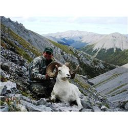 10-day Yukon Fannin or Dall Sheep Hunt for One Hunter