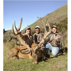 5-day New Zealand Gold Medal Red Stag Hunt for Two Hunters