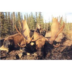 7-day Yukon Trophy Yukon Moose Hunt for One Hunter and One Observer