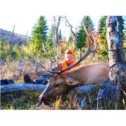 5-day Colorado Elk Hunt for Two Hunters and Two Observers
