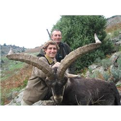 5-day Spain Gredos Ibex and Fallow Deer Hunt for One Hunter and One Observer