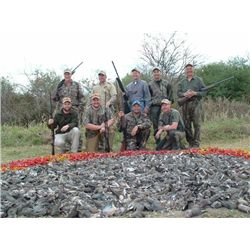 5-day Argentina Duck, Dove, Pigeon and Perdiz Hunt for Eight Hunters