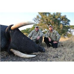 10-day Zimbabwe Elephant and Plains Game Hunt for One Hunter and One Observer