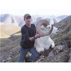 10-day Yukon Dall Sheep Hunt for One Hunter