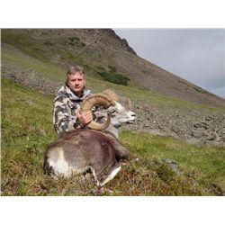 15-day British Columbia Stone Sheep Hunt for One Hunter