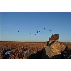 4-night/4-day Uruguay Perdiz, Dove, Duck Shoot, and Dorado Fishing for Six Hunters