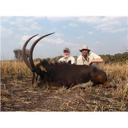 7-day Zambia Sable, Eland and Cape Buffalo Hunt for One Hunter and One Observer
