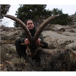 7-day Spain Beceite and Southeastern Ibex Hunt for One Hunter and One Observer