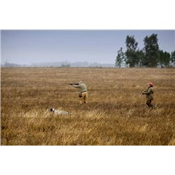 5-night/4-day Uruguay Duck, Perdiz and Dove Shoot for Six Hunters