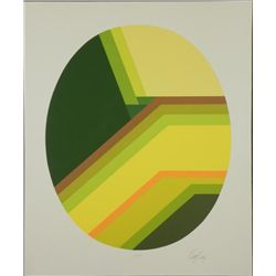 Doug Danz Signed Abstract Print Proof Solado
