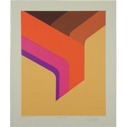 Doug Danz Signed Abstract Proof Print Elevation II
