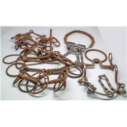 Horse Bit Collection -  ID