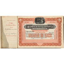 Nevada Stock Certificate Book -  NV