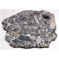 Silverberry Ore Slab from teh Bulldog Mine Colorado -