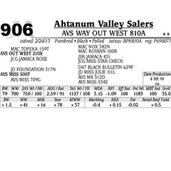 Lot 906 - AVS WAY OUT WEST 810A - Ahtanum Valley Salers