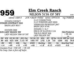 Lot 959 - NELSON 313A OF 38Y - Elm Creek Ranch