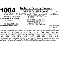 Lot 1004 - NFF EXCALIBUR A009 - Nelson Family Farms