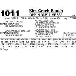 Lot 1011 - OPP IN DEW TIME 83A - Elm Creek Ranch