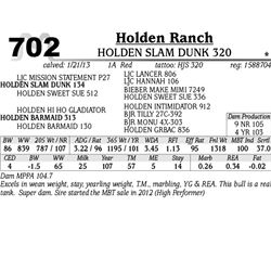Lot 702 - HOLDEN SLAM DUNK 320 - Holden Ranch