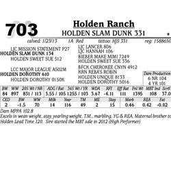 Lot 703 - HOLDEN SLAM DUNK 331 - Holden Ranch