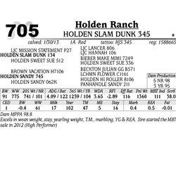 Lot 705 - HOLDEN SLAM DUNK 345 - Holden Ranch