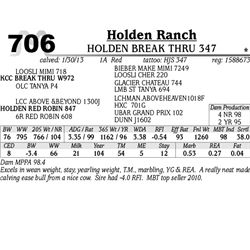 Lot 706 - HOLDEN BREAK THRU 347 - Holden Ranch