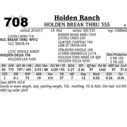 Lot 708 - HOLDEN BREAK THRU 355 - Holden Ranch