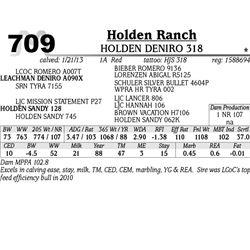 Lot 709 - HOLDEN DENIRO 318 - Holden Ranch