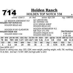 Lot 714 - HOLDEN TOP NOTCH 338 - Holden Ranch