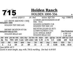 Lot 715 - HOLDEN 1000-356 - Holden Ranch