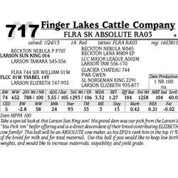 Lot 717 - FLRA SK ABSOLUTE RA03 - Finger Lakes Cattle Company