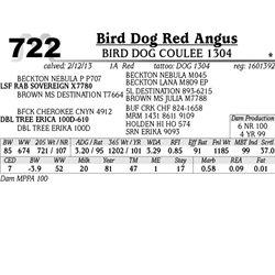 Lot 722 - BIRD DOG COULEE 1304 - Bird Dog Red Angus