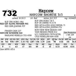 Lot 732 - HAYCOW GRANITE 314 - MJB Ranch