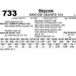 Lot 733 - HAYCOW RECAP 325 - MJB Ranch