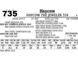 Lot 735 - HAYCOW TOPHAT 336 - MJB Ranch