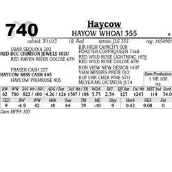 Lot 740 - HAYCOW YES 357 - MJB Ranch