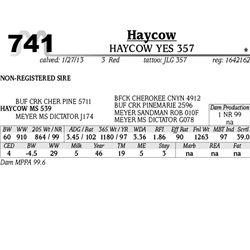 Lot 741 - HAYCOW CHILLER 359 - MJB Ranch