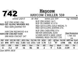 Lot 742 - HAYCOW GUESS WHO! 360 - MJB Ranch