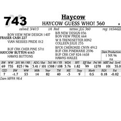 Lot 743 - HAYCOW TIME OUT 361 - MJB Ranch