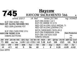 Lot 745 - HAYCOW LETS DO IT 367 - MJB Ranch
