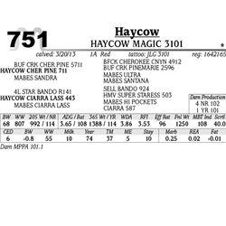 Lot 751 - HAYCOW MAGIC 3101 - MJB Ranch