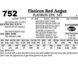 Lot 752 - FLATIRON EPIC 343 - MJB Ranch