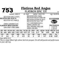 Lot 753 - FLATIRON EPIC 331 - MJB Ranch