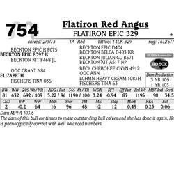 Lot 754 - FLATIRON EPIC 329 - MJB Ranch