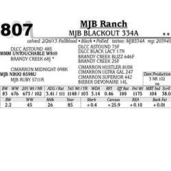 Lot 807 - MJB BLACKOUT 334A - MJB Ranch